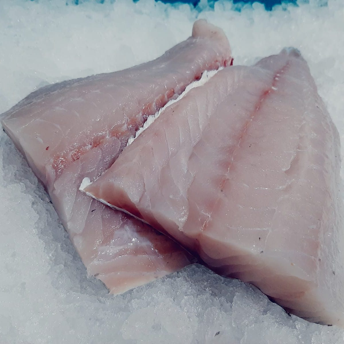 Fresh Coley Fillet
