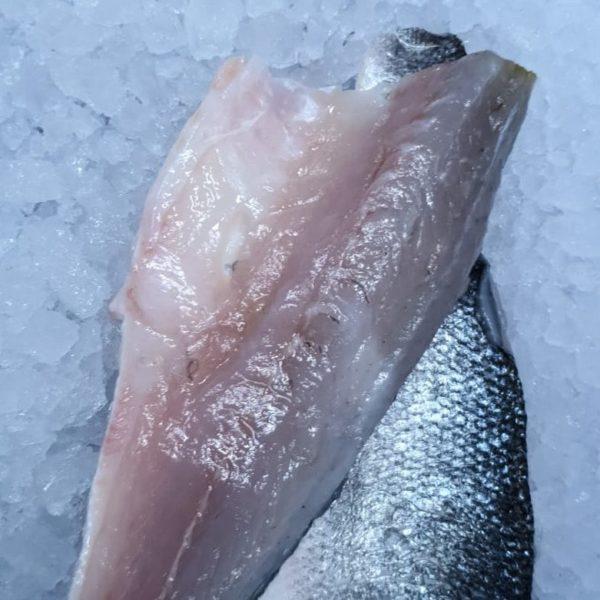 Fresh Sea Bass Fillets