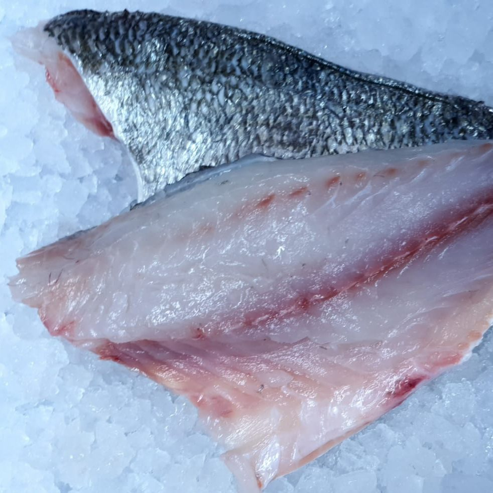 Fresh Sea Bream Fillets